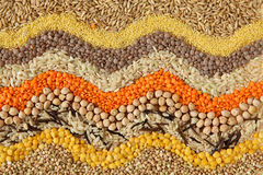 Diverse zaden en korrels Royalty-vrije Stock Afbeelding