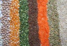 Diverse zaden en korrels stock afbeelding