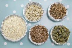 Diverse zaden in glanzende kommen stock foto's