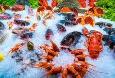 Diverse zeevruchten op de planken van de vissenmarkt Stock Foto
