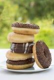 Diverse Zoete donuts Royalty-vrije Stock Afbeeldingen