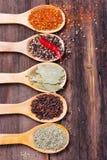 Diverses épices dans des cuillères image libre de droits