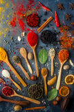 Diverses épices indiennes dans des cuillères et des cuvettes en bois en métal, des herbes et des écrous sur le fond en pierre fon Photographie stock