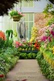 Diverses espèces de fleurs colorées fleurissant pendant le ressort dans le domaine Wintergardens d'Auckland Photo stock