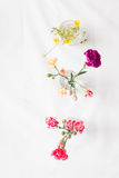 Diverses fleurs Images stock