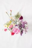 Diverses fleurs Photographie stock libre de droits