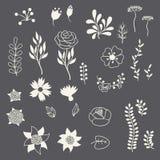 Diverses fleurs d'éléments floraux romantiques dans rétro illustration stock