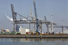 Diverses grues dans le port de Rotterdam Photos stock