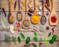 Diverses herbes et épices dans des cuillères en bois Configuration plate des épices dedans Images stock
