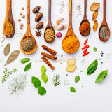 Diverses herbes et épices dans des cuillères en bois Configuration plate des épices dedans Photo stock