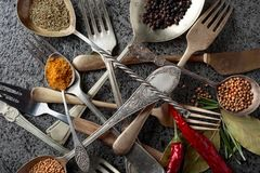 Diverses herbes et épices sur la table en métal images libres de droits
