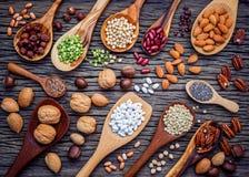 Diverses légumineuses et différents genres de coquilles de noix dans des cuillères Waln Images stock