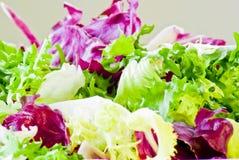 Diverses lames de salade image stock
