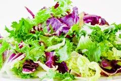 Diverses lames de salade photographie stock libre de droits