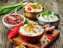 Diverses sauces à immersion photographie stock libre de droits