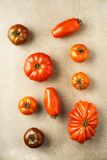 Diverses tomates d'héritage Photos stock