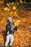 Diversión con las hojas de otoño Imagen de archivo