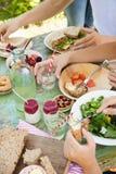 Diversión de la comida campestre Fotos de archivo