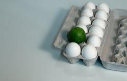 Diversión del cartón del huevo Fotografía de archivo libre de regalías