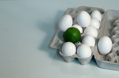 Diversión del cartón del huevo Fotografía de archivo