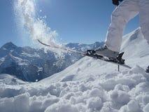 Diversión del esquí en un top de la montaña