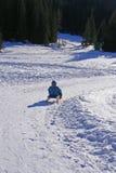 Diversión del invierno Foto de archivo