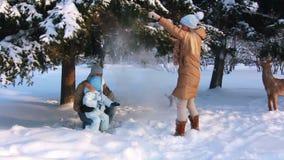 Diversión del invierno de la familia almacen de metraje de vídeo