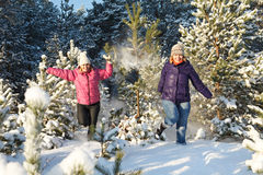 Diversión del invierno en bosque Imagenes de archivo