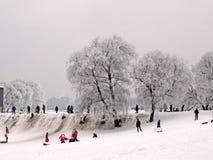 Diversión del invierno en el parque de la ciudad Imagen de archivo libre de regalías