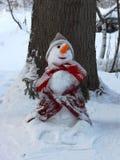 Diversión del invierno Muñeco de nieve Fotografía de archivo
