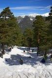 Diversión en nieve Imágenes de archivo libres de regalías