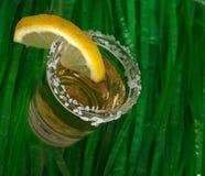 Diversión tirada de Tequila Fotografía de archivo libre de regalías