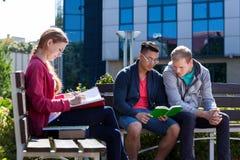 Diversi studenti durante il giorno soleggiato Immagine Stock Libera da Diritti