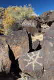Diversi tipi di petroglifi, monumento nazionale del petroglifo, Albuquerque, New Mexico Fotografie Stock Libere da Diritti