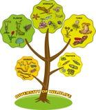 Diversidad de la fauna Imagen de archivo libre de regalías