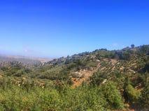 Diversidade natural na ilha da Creta imagens de stock