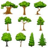 Diversité d'ensemble d'arbres illustration stock