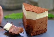 Diversité de pâtisserie décorée du fruit, produits alimentaires de boulangerie, boulangerie fraîche, mini gâteau Photographie stock