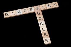 Diversiteit en succes Stock Afbeelding