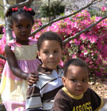Diversity. Three children of different backgrounds sit on a tree limb together Stock Image