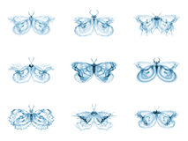 Diversity of Fractal Butterflies Royalty Free Stock Photos
