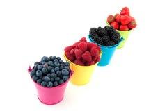 Diversity fresh fruit Stock Photography