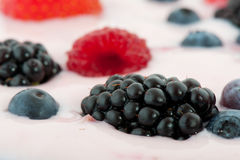 Diversity fresh fruit Royalty Free Stock Photography