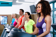 Diversity group of people on treadmill in gym Stock Photography