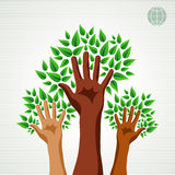 Diversity hands green concept tree Stock Photos