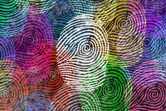Diversity Identity Symbol. Diversity identity and privacy concept and personal private data symbol as diverse finger prints or fingerprint icons and census Royalty Free Stock Images