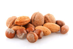 Diversity of nuts Royalty Free Stock Photo