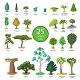 25 Diversity of trees set Stock Photo