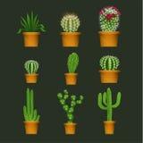 Diverso cactus mecanografía adentro a maceta los iconos realistas del vector fijados