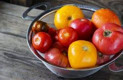 Diverso de los tomates lavados recientemente en colador imagen de archivo libre de regalías